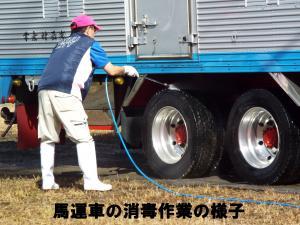 8馬運車消毒作業
