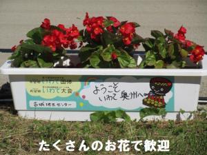 14花で歓迎