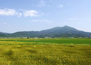いぃ那珂暮らし おでかけスポット 筑波山神社