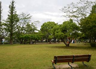 いぃ那珂暮らし応援団 記事 宮の池公園