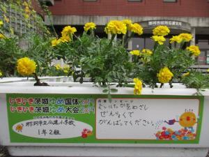 花いっぱい運動応援メッセージ