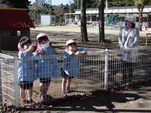 4歳児も幼稚園から応援