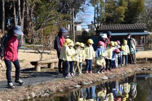 ザリガニの池を観察