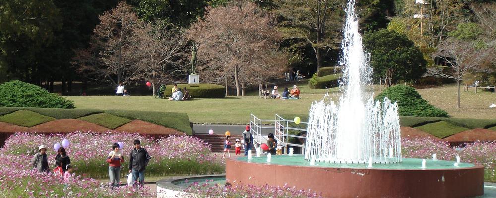 おススメスポット(植物園秋花壇)