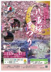 『平成29年度「八重桜まつり」開催のお知らせ』の写真